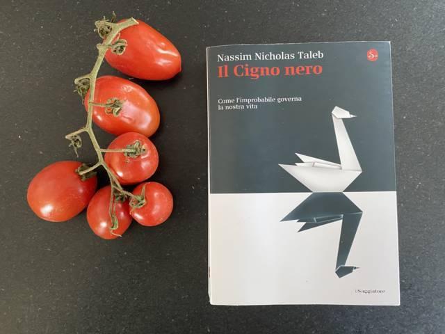 Copertina del libro Cigno Nero di Nassim N Taleb