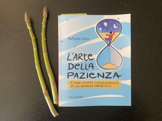 L'arte della pazienza, libro di Raffaele Gaito